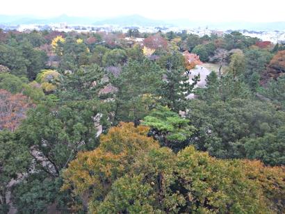 とよはし市民会議控室から東方の豊橋公園の秋を空から